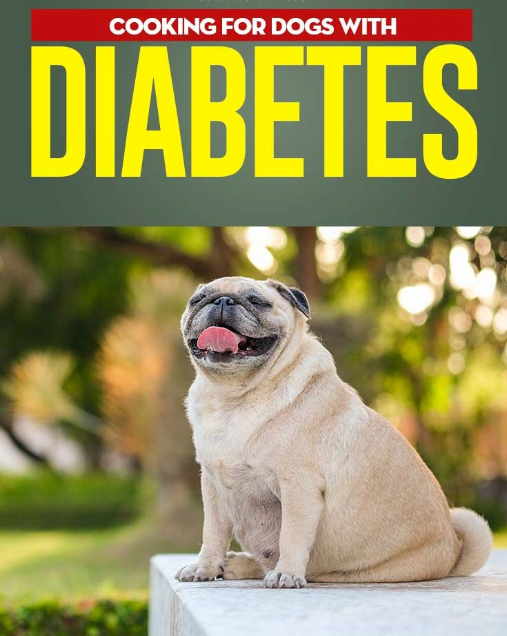 What human food can I feed my diabetic dog