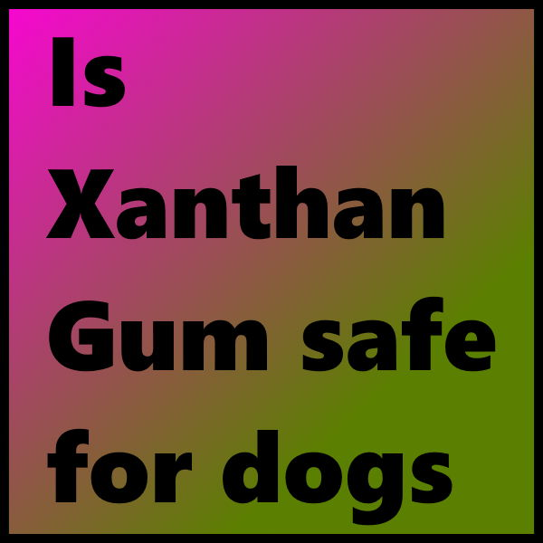 Is Xanthan Gum safe for dogs