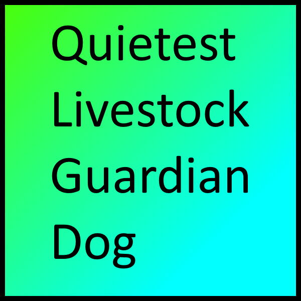 Quietest Livestock Guardian Dog