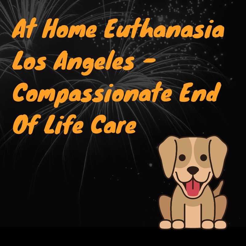 At Home Euthanasia Los Angeles - Compassionate End Of Life Care