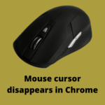 Mouse cursor disappears in Chrome