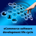 eCommerce software development life cycle